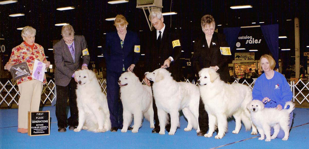 Champion Double Ring Leading Lady (Sophia) and 4 generations of offspring take First place at the 2011 KCA Generations class